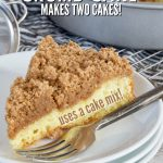 Makes Two Cakes! Eat One Share One! | The Fresh Cooky