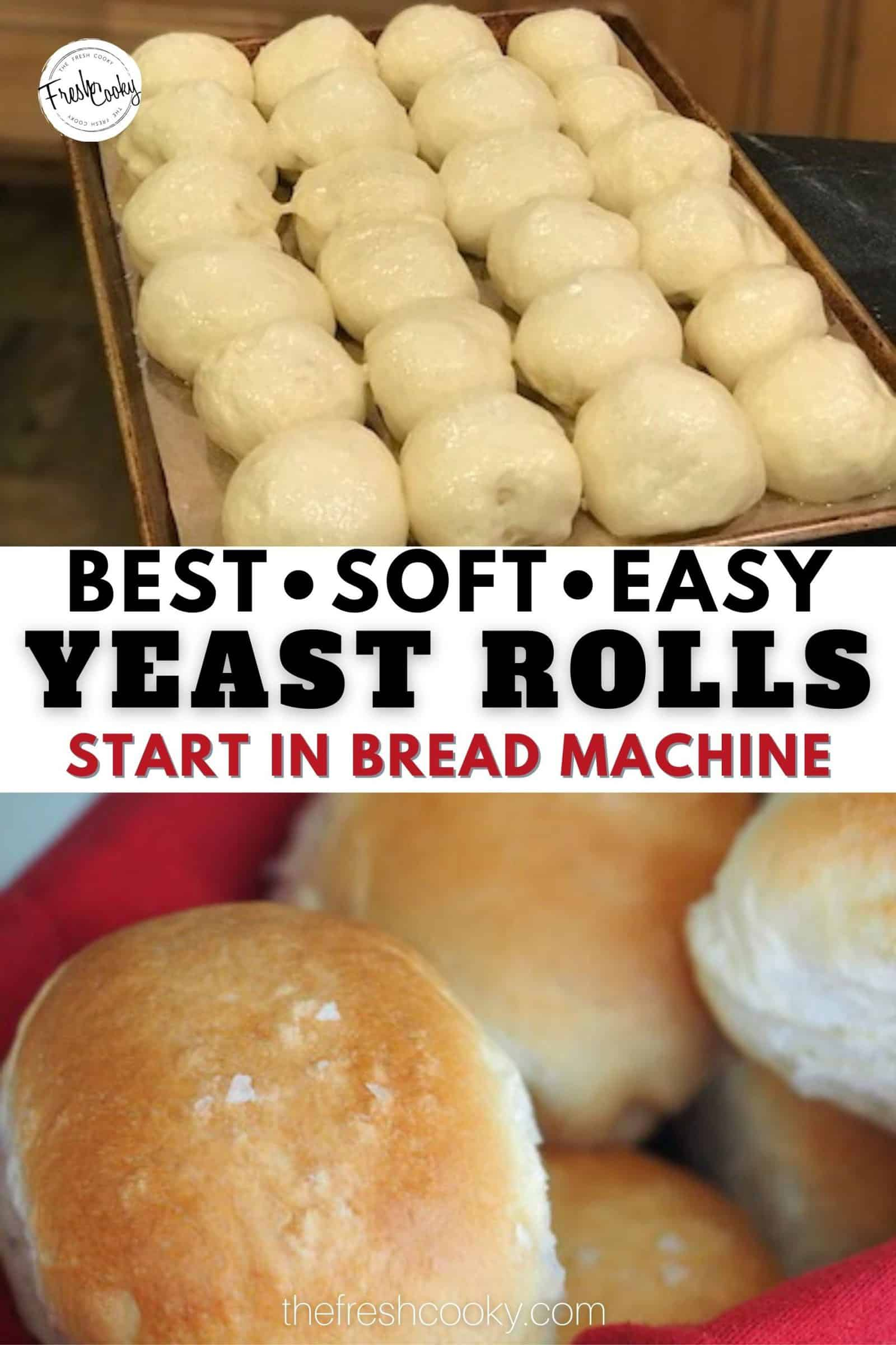 These no fail easy yeast rolls are perfect for your holiday meals. Start at noon and have fresh, hot, warm, soft dinner rolls by dinner! #thefreshcooky #easydinnerrolls #holidayrecipes via @thefreshcooky