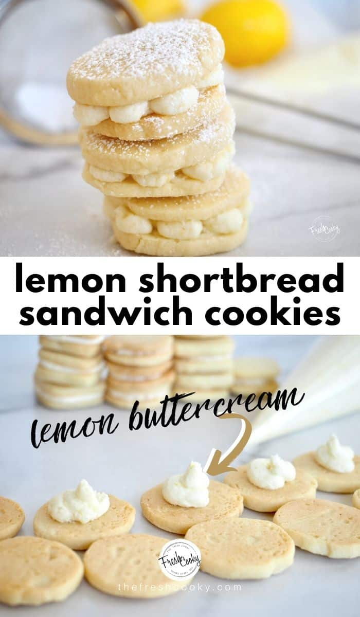 Lemon Shortbread Sandwich Cookies are a light, buttery slice and bake cookie with a bright lemon flavor. Tender, not overly sweet, with a delicious sweet-tart lemon frosting sandwiched between. These might possibly be my most favorite cookie. www.thefreshcooky.com | #lemon #cookie #shorttbread #refrigeratorcookie #sliceandbake #lemonfrosting #lemoncream #sandwichcookie #easyrecipe #eggfree #teacookies #mothersdaybrunch #easterrecipe via @thefreshcooky