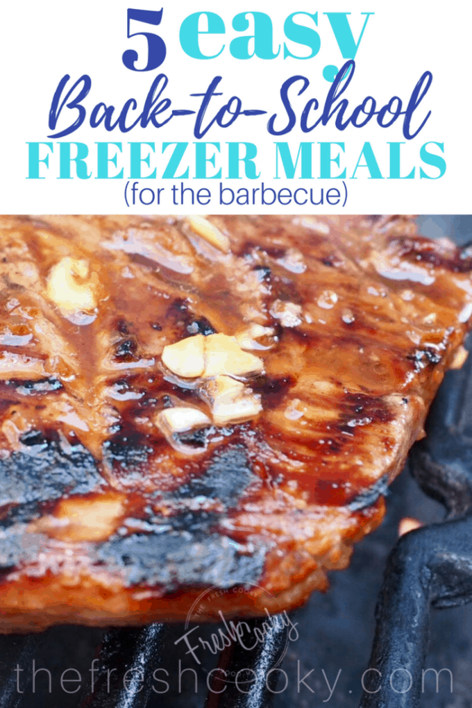 5 Easy Back-to-School freezer meals Pin | www.thefreshcooky.com