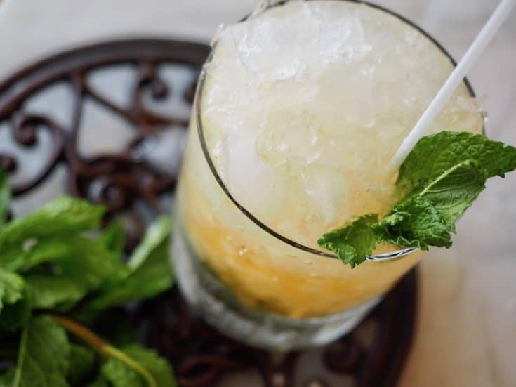 Mint Julep | A Southern Cocktail