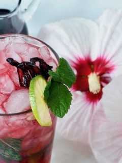 This refreshing recipe for a Hibiscus Mojito from thefreshcooky.com is perfect for summer patio sipping or a GNO. The minty, fizzy mojito is jazzed up with the tangy, floral, lemony flavors of Hibiscus syrup. #hibiscusmojito #mojito #hibiscussyrup #mocktails #hibiscus #summerdrinks #fallcocktail #summercocktail #gnococktails #craftcocktails #qdrinks #clubsoda