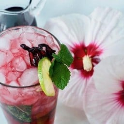Best Hibiscus Mojito {Cocktail or Mocktail}