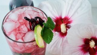 Hibiscus Mojito {Cocktail or Mocktail}
