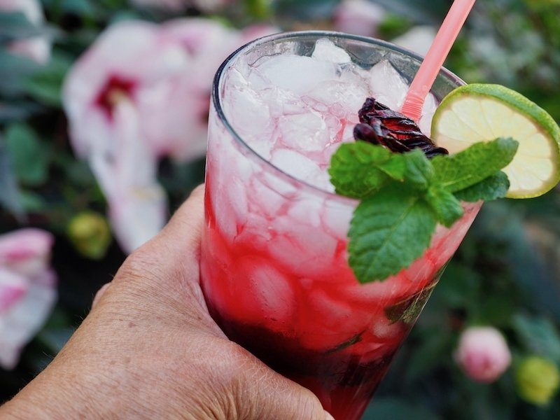 Simple steps on how to make this recipe for all-natural, Hibiscus Mojito. It is so fresh, fruity, floral, and minty...it's the tropics in a glass! #thefreshcooky #mocktail #hibiscus #floralcocktail #cocktail #mojito