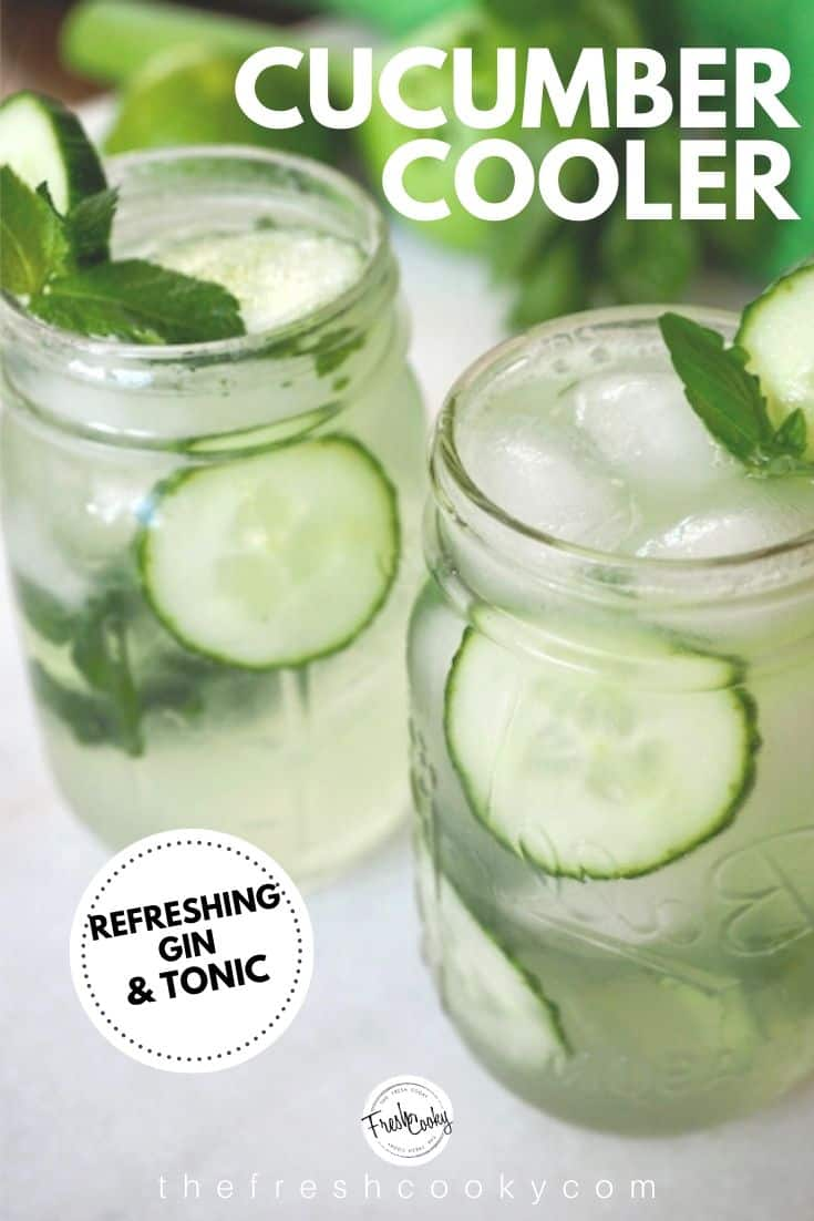 Spa water for adults! This Cucumber Cooler is light, crisp and refreshing; crunchy cucumbers, refreshing mint or earthy basil. Enjoy it after a hot afternoon playing outside or sipping with your girlfriends. Recipe via @thefreshcooky | #cucumbercooler #cocktail #mocktail #ginandtonic #mint #basil #lime #spawater via @thefreshcooky