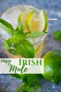 Irish Whiskey Mule with limes   www.thefreshcooky.com