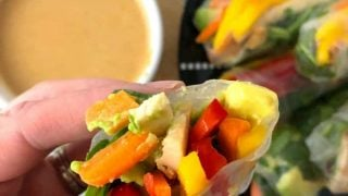 Mango Chicken Fresh Spring Rolls With Peanut Dipping Sauce