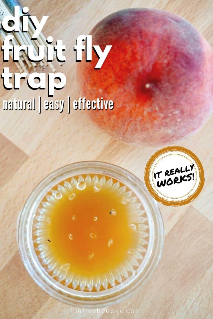 Quick tutorial on how to make a homemade fruit fly trap. Get rid of fruit flies in your kitchen quick and easy with this simple DIY fruit fly trap! Using all natural, non-toxic ingredients like apple cider vinegar. It's the best and proven way to trap and kill them! www.thefreshcooky.com | #diy #fruitflytrap #applecidervinegar #effective #homemade #makeyourown via @thefreshcooky