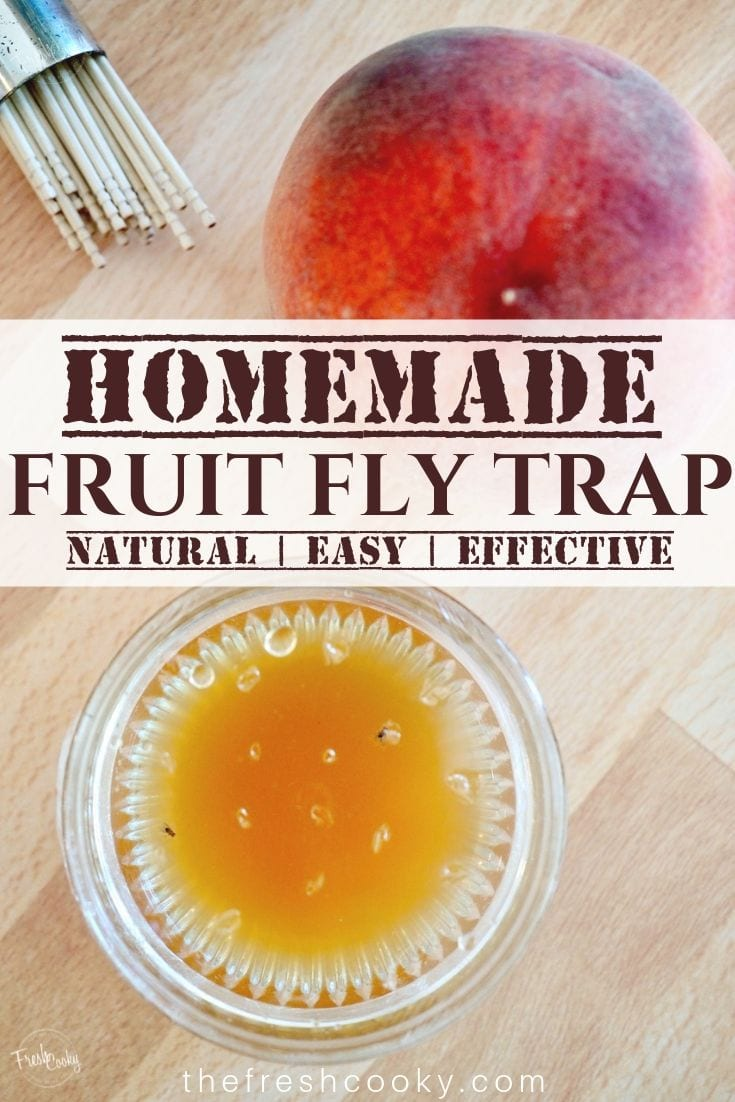 Fruit fly trap with a couple of flies in the trap, pinterest image.
