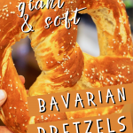 Short pin with hand holding a giant, fluffy Bavarian Pretzel that is soft and chewy.