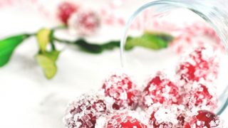 Sugared Cranberries | 3 Sugar Varieties