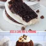 Best easy nothing bundt cakes recipe for chocolate chocolate chip bundt and bundtlets, top image of bundt, bottom image of bundtlet.
