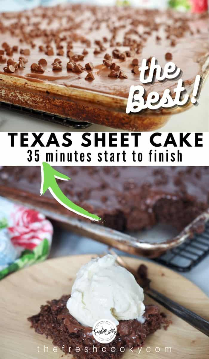 Simply the BEST Texas Sheet Cake or Chocolate Sheet Cake ever! It comes together likity split and feeds a crowd, great for potlucks, parties and more! Plus I give you simple high altitude adjustments. Grab the recipe on #thefreshcooky | #chocolate #sheetcake #cake #cookedchocolatefrosting #Pioneerwoman #best via @thefreshcooky