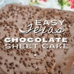 Pin for Easy Texas Sheet Cake with image of chocolate sheet cake covered in fudge frosting and mini chocolate chips.