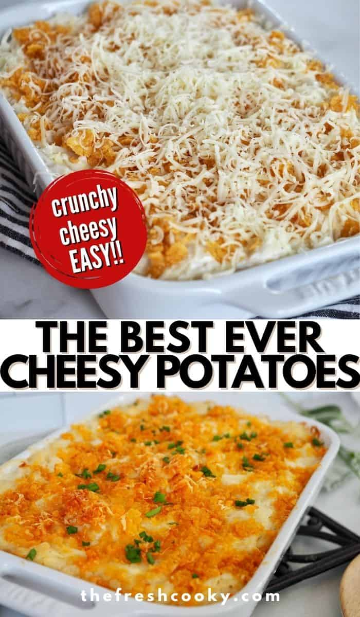 It is no exaggeration when I say these are the Best Ever Cheesy Potatoes! Also called Funeral Potatoes, or party potatoes, this easy recipe using frozen hashbrowns, white sauce (no canned soup), shredded cheddar, sour cream and buttery corn flakes for a topping are amazing. The best side dish for Christmas, Easter, Thanksgiving and potlucks. #thefreshcooky #cheesyfuneralpotatoes #thepioneerwoman via @thefreshcooky
