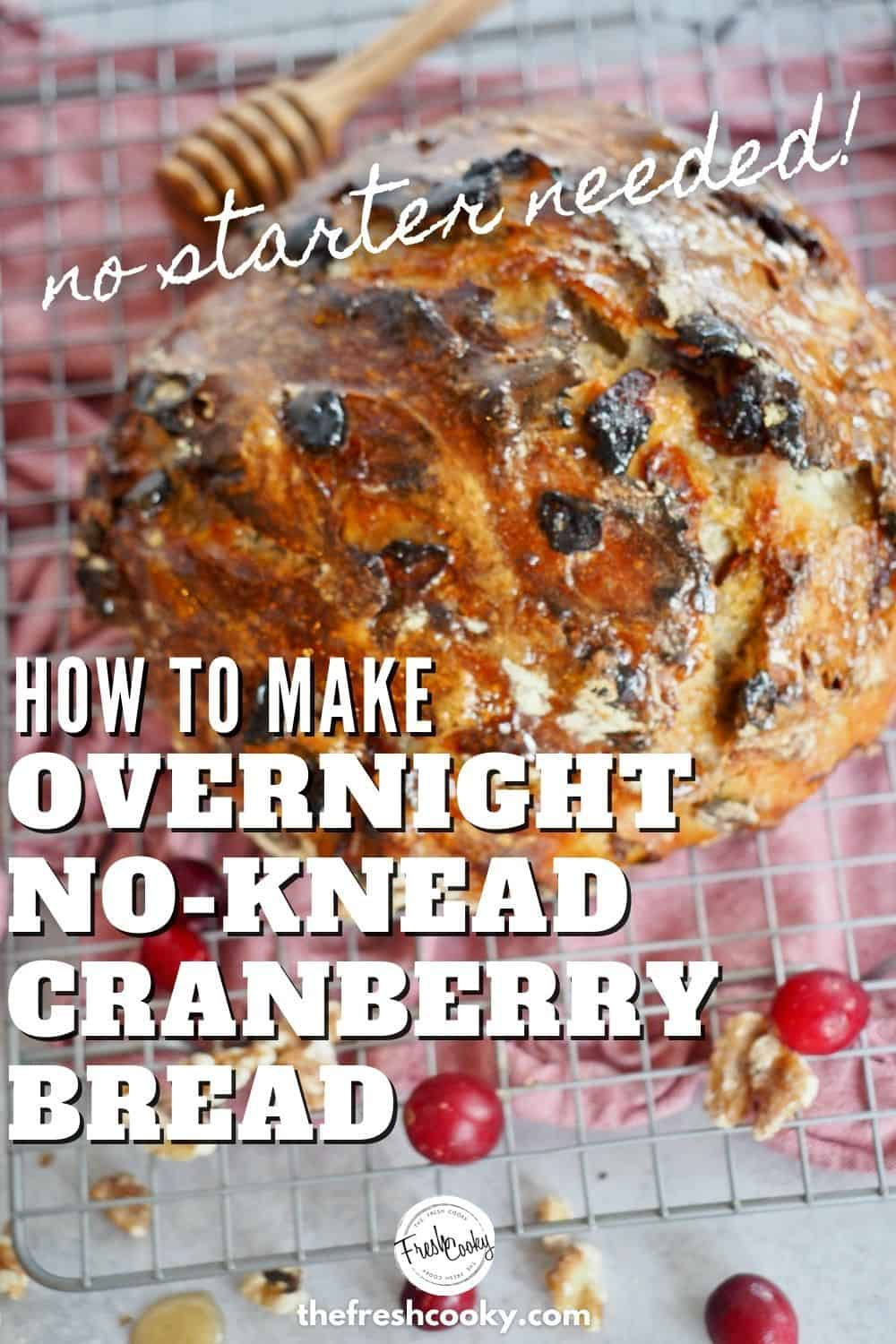 How to make your own homemade, no knead, cranberry walnut bread with step-by-step instructions. No starter needed for this simple rustic bread recipe, baked in a dutch oven using dried cranberries and nuts. #thefreshcooky #nokneadbread #holidaybaking via @thefreshcooky
