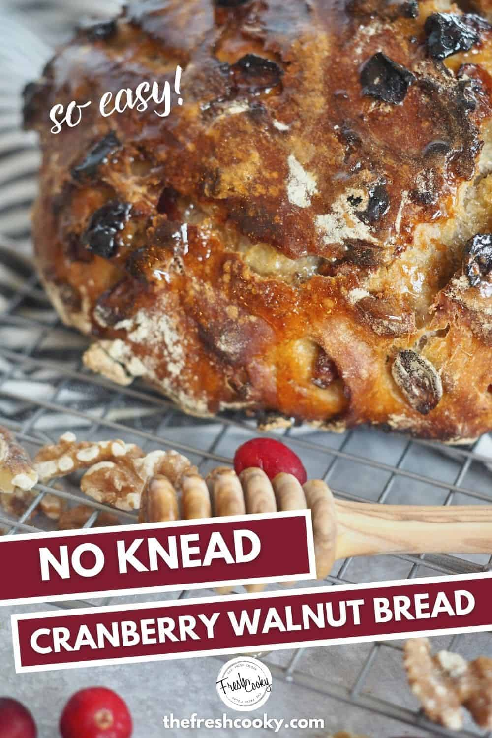 An easy recipe for Artisan Cranberry Nut Bread recipe from The Fresh Cooky is simply the best. A no knead rustic bread, using a dutch oven to get a crispy outside and chewy inside. Delicious with dried cranberries, walnuts and just a few pantry ingredients. #thefreshcooky #cranberrynutbread #nokneadbread  via @thefreshcooky