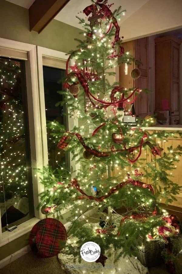 Image of Christmas tree at night, Charley Brown Tree