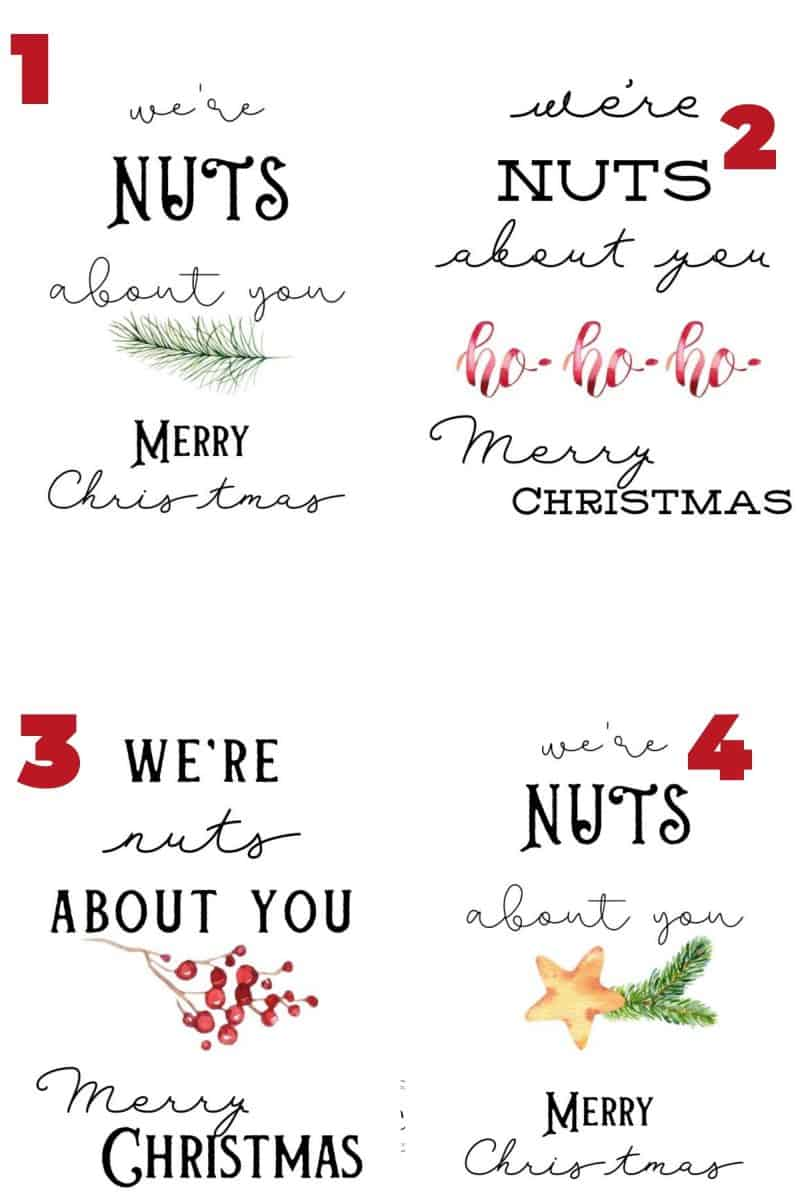 4 different designs of we're nuts about you gift tags.
