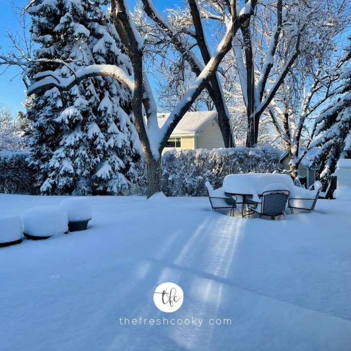 Winter snow scene, backyard with patio furniture buried under snow.