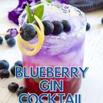 Blueberry Gin Fizz Cocktail with image of blueberry cocktail with fresh blueberries on a skeewer a pretty red, white and blue layered drink.
