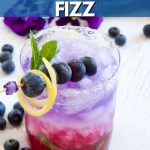 Patriotic Cocktail a blueberry gin fizz with image of red, white andd blue-berry layered cocktail.