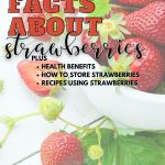 Pin for Fun facts about Strawberries with image of bowl of strawberries with stems.