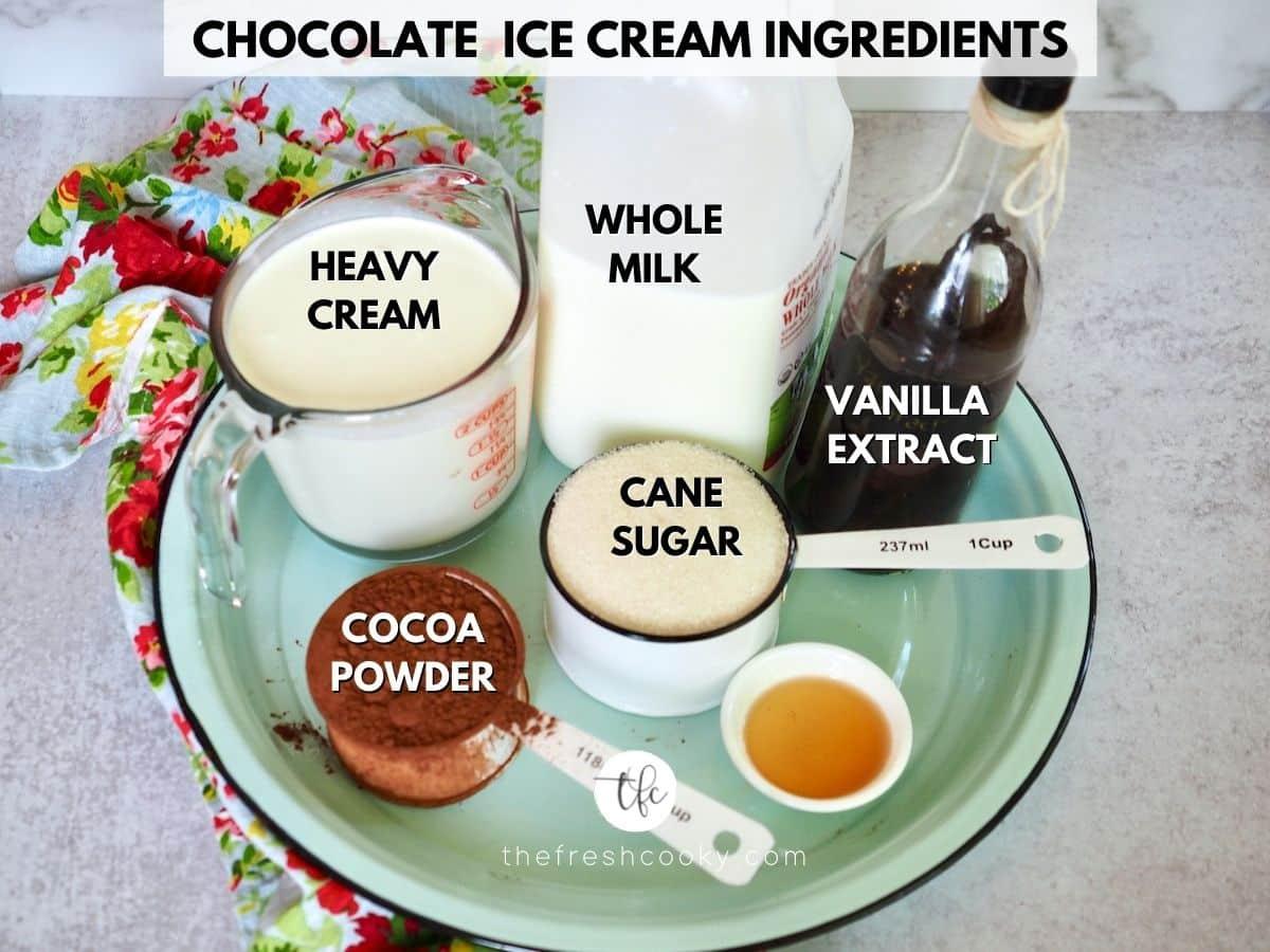 Chocolate Ice Cream Ingredients for Chocolate Brownie Ice Cream.