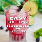 Easy Blueberry Limeade Drink with shot of glass filled with blueberry limeade, blueberries and a lime wheel, plus a red paper straw.