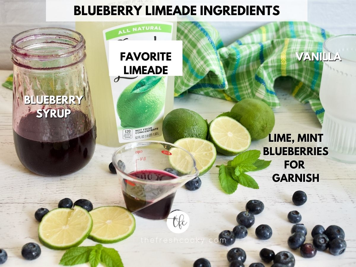 Ingredients for Blueberry Limeade or lemonade drink L-R Blueberry simple syrup, limeade, fresh blueberries, mint and limes for garnish.